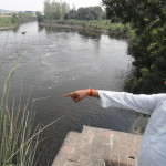 Indicating-the-Pollution-in-the-River-Kali